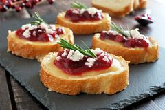 Crostini appetizers with cranberry sauce, cheese and rosemary on slate Royalty Free Stock Images