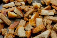 Crostini e cracker Fotografie Stock Libere da Diritti