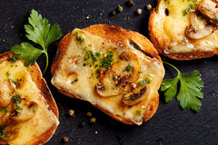 Crostini with melted cheese, mushrooms and fresh parsley on black background Royalty Free Stock Photo