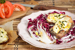 Crostini Radicchio Salad. Vegetarian Food Stock Images