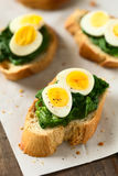 Crostini with Spinach and Quail Egg Royalty Free Stock Photos