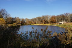 Crotona Park 19 Royalty Free Stock Photos