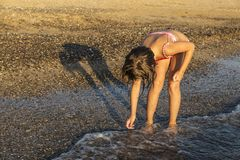 Crouched little girl picking mollusk shells on a beach. In summer in Sicily, Italy royalty free stock photo