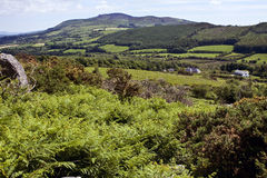 Croughaun Hügel Lizenzfreies Stockbild
