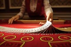 Croupier i kasinot gör en röra av kort royaltyfri foto