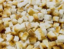 Crouton Stock Photography