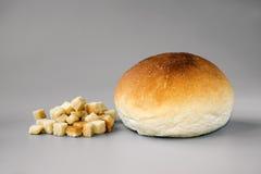 Crouton i Chlebowa rolka Obraz Royalty Free