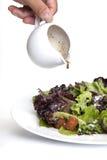 croutons οργανική σαλάτα στοκ φωτογραφία με δικαίωμα ελεύθερης χρήσης