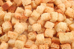Croutons. Small spicy, crunchy, toasted, golden bread croutons royalty free stock images