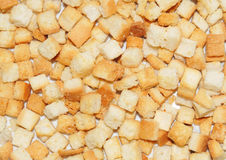 Croutons. Texture suitable as background stock images