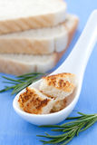 Croutons on spoon Royalty Free Stock Photo