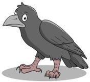 Crow. Illustration of a black bird Royalty Free Stock Photo