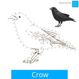 Crow bird learn to draw vector Royalty Free Stock Photos
