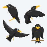 Crow Cartoons. Vector set of cartoon crows Stock Images