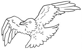 Flying Crow Line Drawing Royalty Free Stock Images
