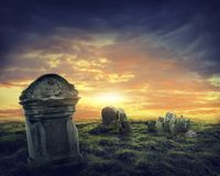Crow on a gravestone Royalty Free Stock Image