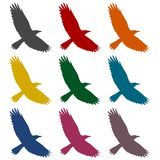 Crow icons set Royalty Free Stock Photography