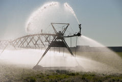 Crow Irrigation royalty free stock photos