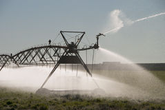 Crow Irrigation stock photography