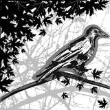Crow with jungle. Grunge style crow illustration vector Royalty Free Stock Photos
