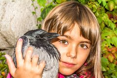 Crow and a little girl. Little girl is holding a bird Stock Image
