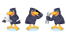 Crow Mascot with phone. Crow Mascot vector with phone and laptop Stock Images
