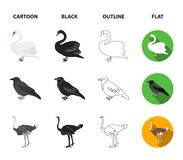 Crow, ostrich, chicken, peacock. Birds set collection icons in cartoon,black,outline,flat style vector symbol stock. Illustration Royalty Free Stock Photo
