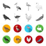 Crow, ostrich, chicken, peacock. Birds set collection icons in monochrome,flat style vector symbol stock illustration.  Stock Photography
