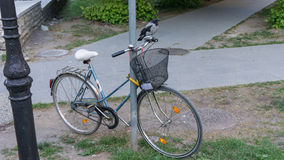 Crow perched on bicycle bird Stock Photography