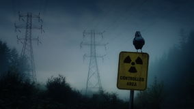 Crow perches on nuclear radiation sign