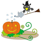 Crow's plant. Illustration of a crow watering a pumpkin Stock Photography