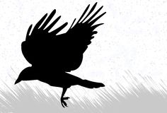 Crow silhouette Stock Photography