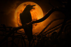 Crow sit on dead tree trunk and croak over fence, old grunge cas. Tle, moon and cloudy sky, Mysterious background, Halloween concept Royalty Free Stock Photography