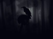 Crow sitting on a gravestone silhouette abstract background. Royalty Free Stock Photography
