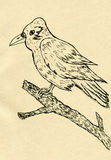 Crow Sketch Royalty Free Stock Images