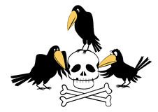 Crow and Skull Stock Images