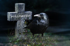 Crow and stone cross on the graveyard at night, halloween vector illustration