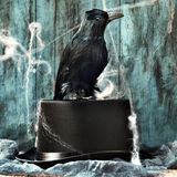 Crow on a top hat in a dismal scene Stock Image