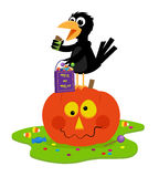Crow Trick or Treat Stock Images