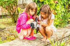 Crow and two  little girls. Little girls are helping a bird with a broken wing Stock Images