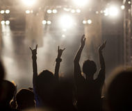 Crowd at concert Royalty Free Stock Photos