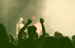 Crowd at concert Royalty Free Stock Image