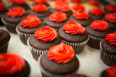 Crowd of cupcakes closeup. Chocolate and some vanilla cupcakes backed for valentines day royalty free stock photography