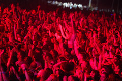 Crowd enjoying concert on Exit festival Stock Photography