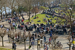Crowd enjoying sunny weather on Rhine Promenade Royalty Free Stock Photography