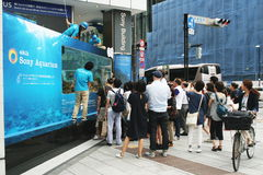 A crowd gathers to view the aquarium outside the Sony Building in Ginza, Tokyo Stock Image