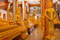 Crowd of golden Buddha statues in different poses inside Wat Chalong temple Stock Image