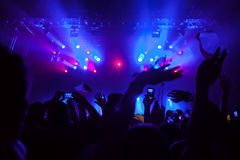 Crowd having fun at a concert. Stock Image