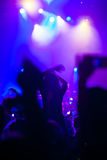 Crowd having fun at a concert. Royalty Free Stock Image