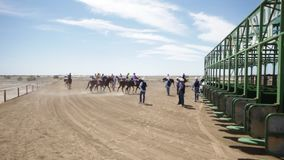 Crowd with horse racers on a horse. A wide shot of a crowd and horse racers stock footage